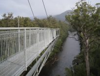 Tahune-Forest-AirWalk-Cantilever-2008