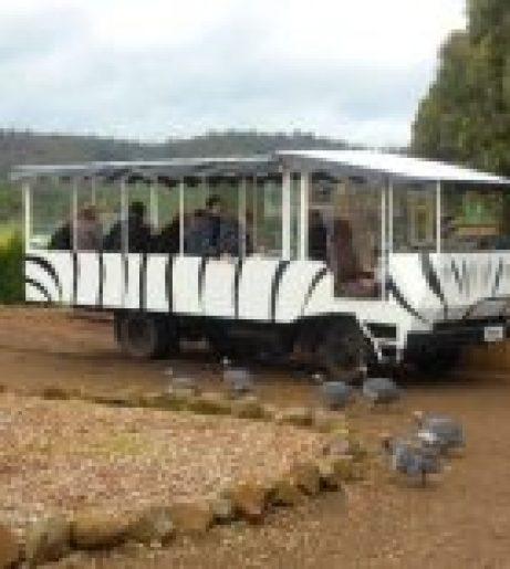 zoodoo-wildlife-park-safari-bus1-205x155